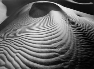 Barnbaum dunes