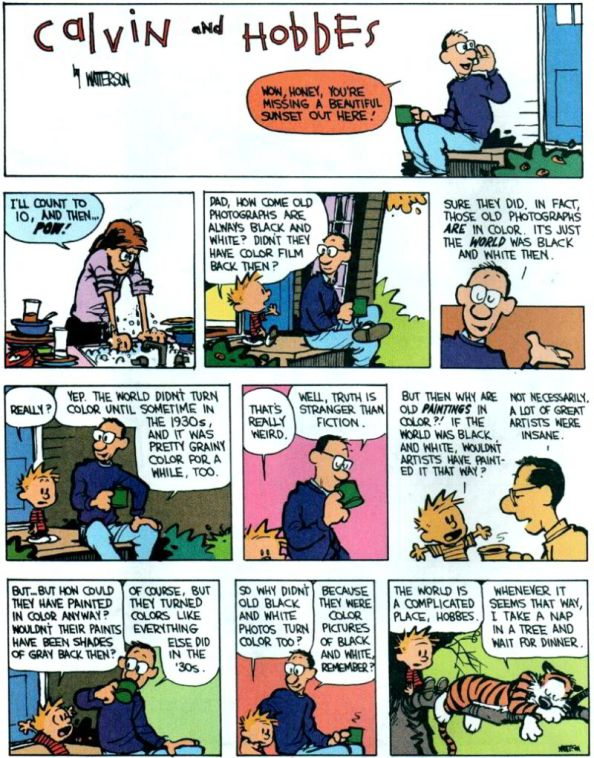 Calvin and Hobbes when the world was black and white