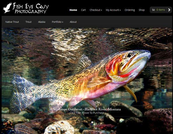 Fish Eye Guy site
