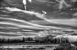 IMG_8941_8942_8943_easyHDR_RAW_Stack_BW2
