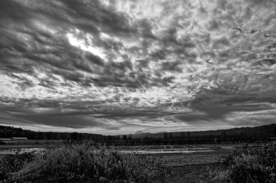 IMG_9236_9237_9238_easyHDR_RAW_smart merge_BW