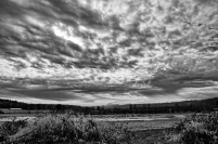 IMG_9236_9237_9238_easyHDR_RAW_Stack_BW
