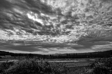 IMG_9236_9237_9238_easyHDR_THDR_RAW_BW
